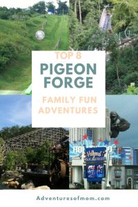 Top 8 Family Adventures in Pigeon Forge