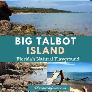 Big Talbot Island State Park