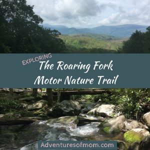 Roaring Fork: The Smoky Mountains Other Scenic Motor Trail