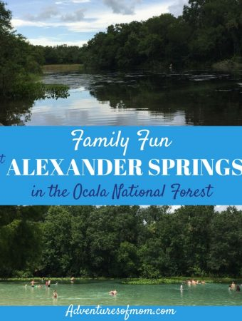 Family Adventures at Alexander Springs in the Ocala National Forest
