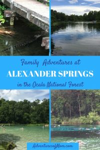 Family Adventures at Amexander Springs in the Ocala National Forest