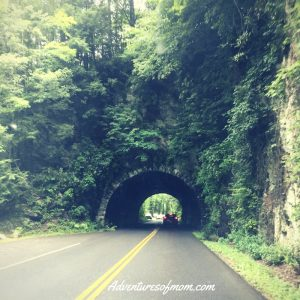 Tunnel on Laurel Creek Road towards Cades Cove.