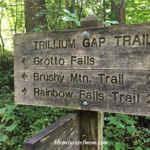 Roaring Fork: The Smoky Mountains Other Scenic Driving Trail