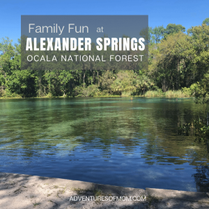 Family Fun at Alexander Springs in the Ocala National Forest