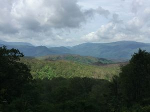 Scenes of the Smokies from the Roaring Fork Motor Trail