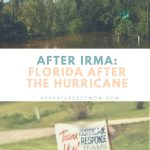 After Irma: Florida After the Hurricane