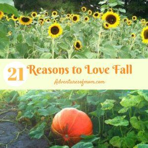 21 Reasons to Love Fall