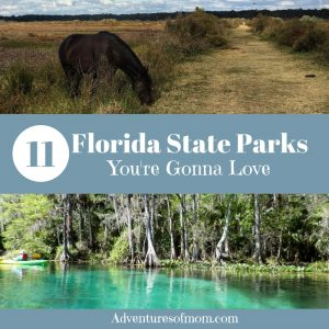 11 Florida State Parks You Will Love