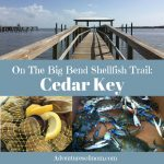Cedar Key: On Florida's Big Bend Shellfish Trail
