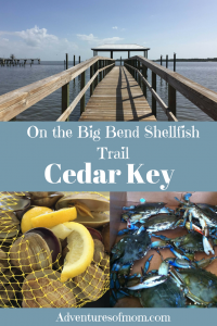 On the Big Bend Shellfish Trail in Cedar Key