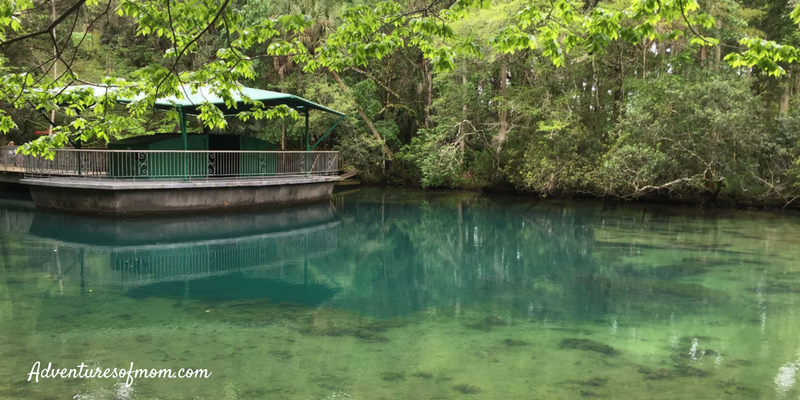 Top 5 Springs in Florida