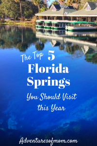 Top 5 Florida Springs You Need to Visit This Year
