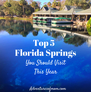 Top 5 Florida Springs You Should Visit This Year