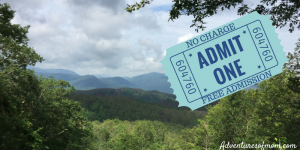 7 Unique Facts Not many People Know About The Great Smoky Mountains National Park