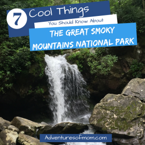 7 Cool Facts to Know About the Great Smoky Mountains National Park