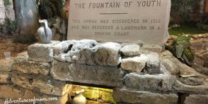 Waters of Life: Finding the Fountain of Youth