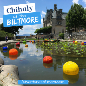 Chihuly Art Exhibition at the Biltmore
