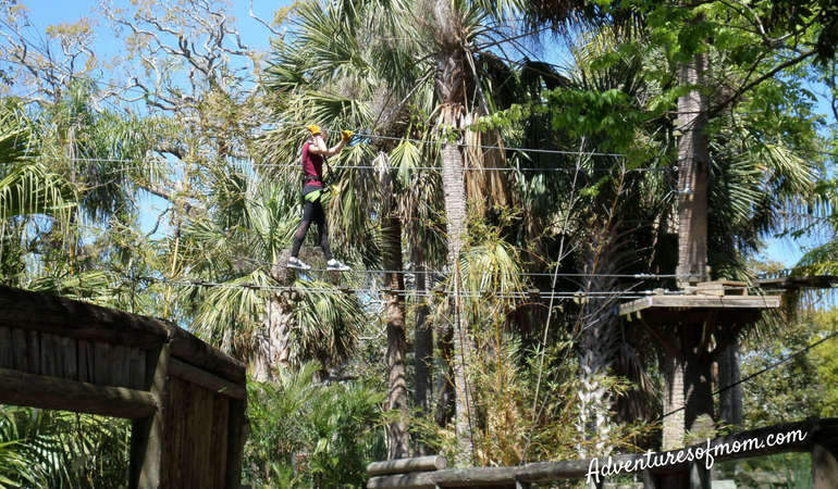 Zip lining over Crocs at St. Augustine's Alligator farm