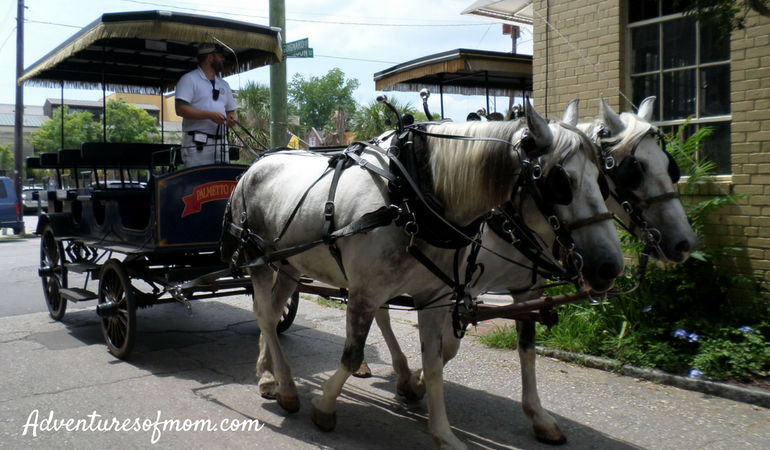 Charleston by Horse & Carriage- the perfect way to explore. 24-Hours in Charleston SC
