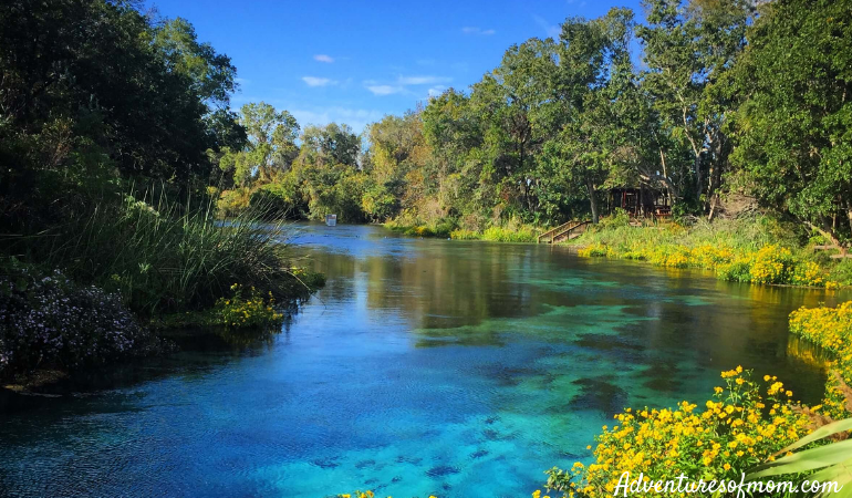 Paddling Florida's Weeki Wachee River- Everything  You Need to Know