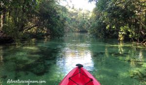 Paddling on Florida's Weeki Wachee River