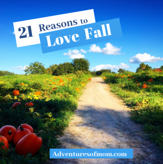 Autumn is here! Here's 21 Reasons to Love Fall