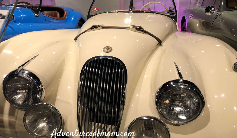 M Bar in Orlando- a Vintage Car Museum & Upscale Hangout