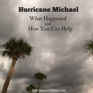 Hurricane Michael: What Happened and How You Can Help