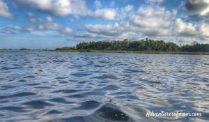 Bayport to Linda Pedersen Park Paddle Trail in Florida