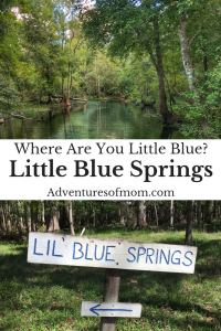 Little Blue Springs: Florida's Lost Swimming Hole
