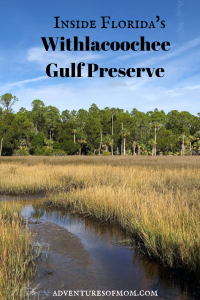 Inside Florida's Withlacoochee Gulf Preserve