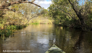 10 Things You Know if You've Paddled Juniper Run