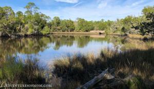 Yankeetown's Withlacoochee Gulf Preserve