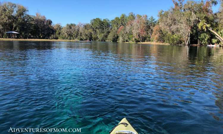 Kayaking the Rainbow River- 1 of 5 unique waterways in Marion County, Florida