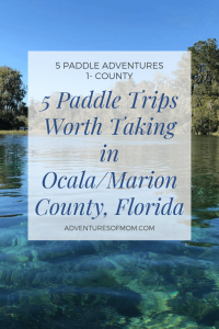 5 Paddle Adventures Worth Taking in Marion County Florida