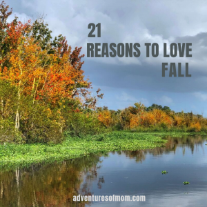 Best Reasons to Love Fall