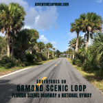 Ormond Scenic Loop near Daytona Beach
