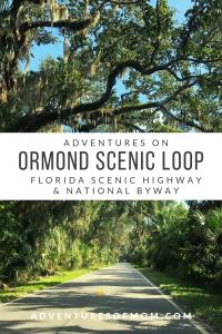 Ormond Scenic Loop