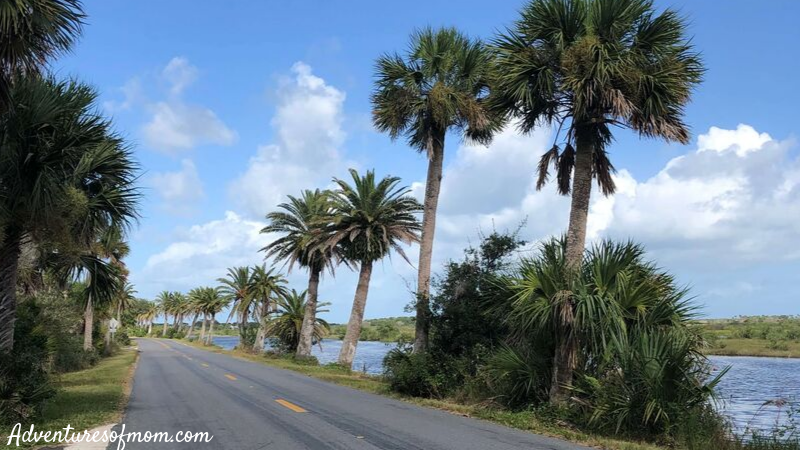 Ormond Scenic Loop & Trail near Daytona Beach