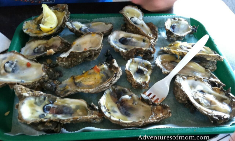 Eating Oysters in Apalachicola: Best Coastal Towns in Florida Your Whole Family Will Love