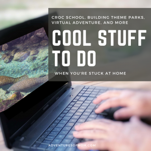 Virtual Adventures, Facebook Live Classes and more: Cool Stuff to Do When You're Stuck at Home