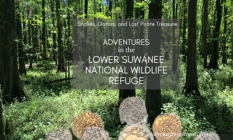 Snakes, Gators & Lost Pirate Treasure: Adventures in the Lower Suwannee National Wildlife Refuge