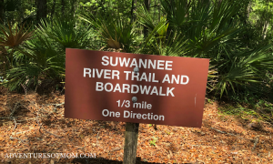 Suwanee River Trail in the Lower Suwanee National Wildlife Refuge