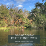Florida Paddles: The Ichetucknee River