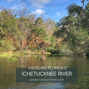 Florida Paddles: The Ichetucknee River