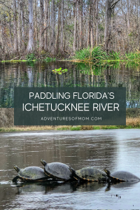 Paddle Adventure on the Ichetucknee River