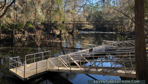 Swimming area at O'Leno State Park