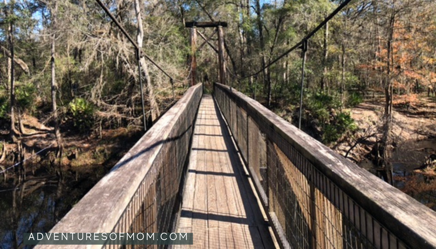 Over the swinging bridge at O'Leno State Park in Florida