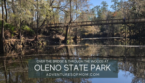 Hiking at O'Leno State Park. Adventures of Mom. Florida hiking