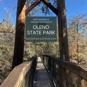 Over the Bridge & Through the Woods: Hiking Adventures at Florida's O'Leno State Park